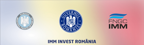 imm invest image